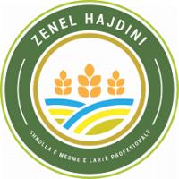 Shkolla e Mesme e Lartë Profesionale Zenel Hajdini
